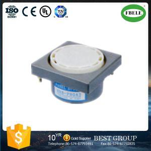 Indoor Alarm Siren Alarm Siren Piezo Alarm Strobe Siren (FBELE) pictures & photos