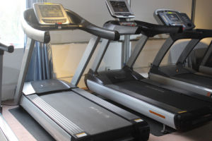 Pink Treadmills/Commercial Treadmills Life Fitness pictures & photos