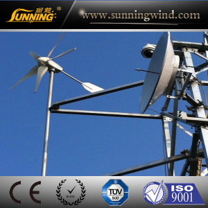 Mini Energie Eolienne Wind Turbine 600W pictures & photos