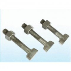 China Good Quality T Bolt with Nut, Good Fastener Manufacture Factory pictures & photos