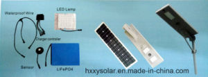 Whosales Integrated Solar Street Lighting 25W-80W pictures & photos