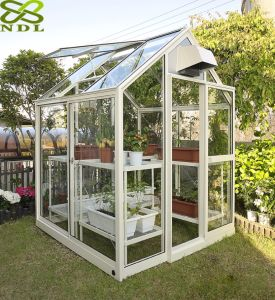 Hobby Small Greenhouse Mini Garden Greenhouse pictures & photos