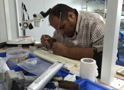 Rigid Endoscope Repair Training Lesson pictures & photos