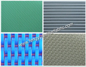 Plain Woven Polyester Filter Fabric with High Weave pictures & photos