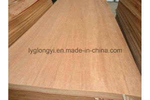 Top Quality Vietnam Eucalyptus Core Veneer for Plywood pictures & photos