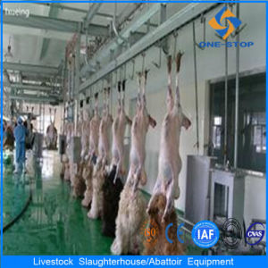 Sheep Slaughter Equipment with Installation Materials pictures & photos