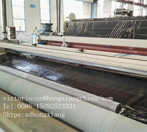 Gcl with HDPE Bonder Liner pictures & photos
