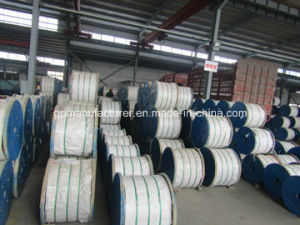 Hot DIP Galvanized Guy Wire, Steel Strand, Stay Wire Strands pictures & photos
