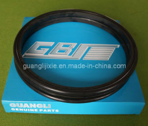 Floating Oil Seal Group 5m7294 pictures & photos