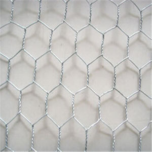 "3/4"" Galvanized Hexagonal Wire Mesh pictures & photos"