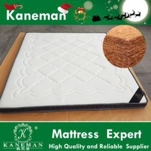 3D Fabric Natural Latex Quilting Mattress Coconut Coir Fiber Mattress 9cm Thick pictures & photos