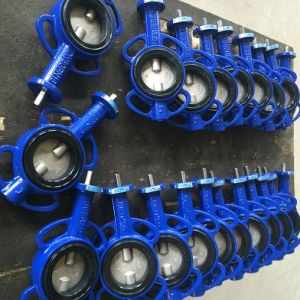 Lug Type Butterfly Valve-Gg25 Body pictures & photos