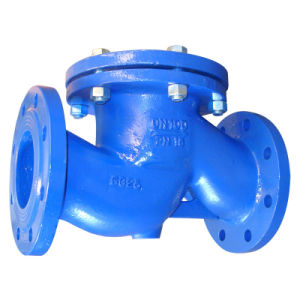 DIN3202 F1 Cast Iron Lift Check Valve pictures & photos