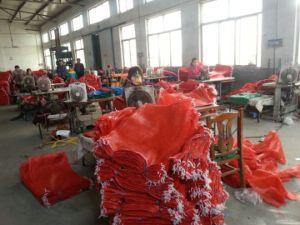 Woven Mesh Net Plastic Color Bag pictures & photos