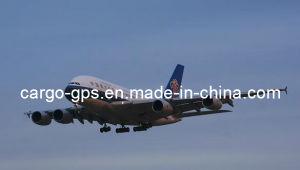 Perishable Cargo From China to Taipei (321/320)
