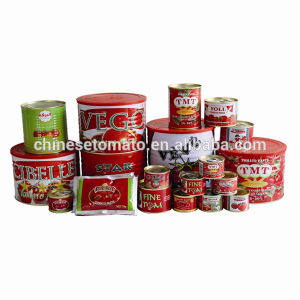 Wholesale Gino Quality 2.2 Kg Tomato Sauce in Normal Open Tin From China Supplier pictures & photos