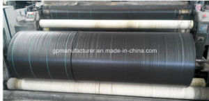 Black Plastic Mulch/Polypropylene Woven Fabric/Weed Control Cloth/Weed Control Fabric pictures & photos