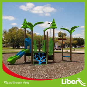 Wisdom Series Children Indoor and Outdoor Playground Equipment pictures & photos