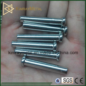 Stainless Steel Dome Head Swage Terminal pictures & photos