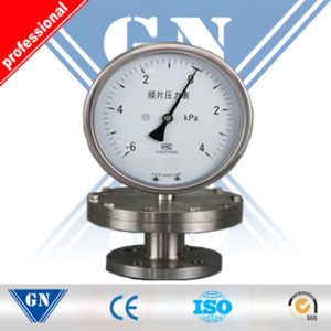 Double Needle Pressure Gauge pictures & photos