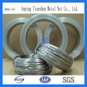 316L Stainless Steel Wire Manufacturer pictures & photos