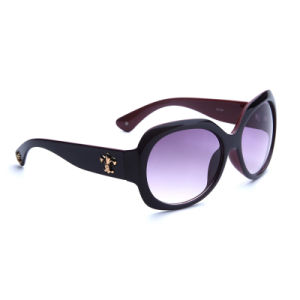 2016 New Arrival Plastic Sunglasses with Acrylic Lens (TC103)