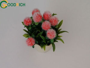 Mini Artificial Bonsai Pot Flower pictures & photos