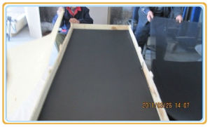 Window Screen /Anti-Theft Window Screen/Electric Insect Screen Door and Window pictures & photos