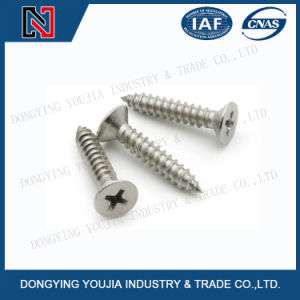 Jisb1122f Stainless Steel Cross Recessed Countersunk Head Tapping Screw pictures & photos