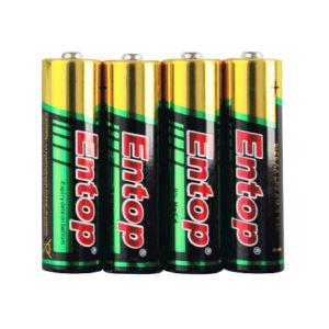 AA Alkaline Toys Battery