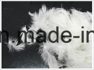 2-4 Cm Washed White Duck Feather for Comforter (IDFL, USA-2000, EN12934, JIS, GB/T17685-2016) pictures & photos