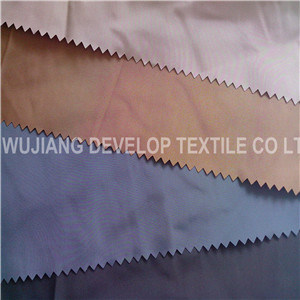 75D Imitation Memory Downproof Coated Fabric (DT3001)