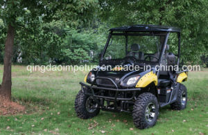 2017 New Model 2-Seat EEC Approved 5kw Electric UTV pictures & photos