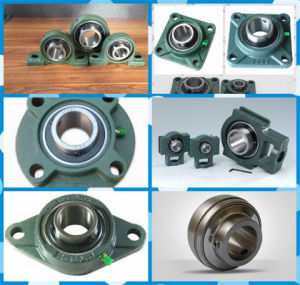China Bearing Manufacturer Export All Kinds of Bearing Housing pictures & photos