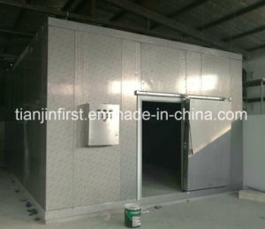 Frozen Cold Room for Meat and Fish/Cold Storage for Meat pictures & photos