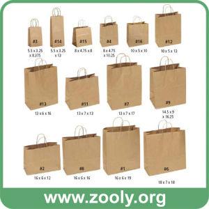 China Eco-Friendly Natural Brown Kraft Paper Shopping Gift Bags ...