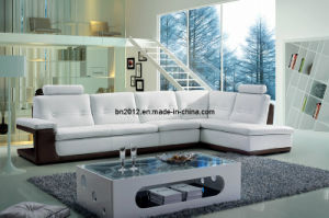 Living Room Genuine Leather Sofa (SBL-9048) pictures & photos