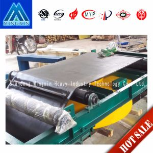 Super Permanent Magnetic Self Discharging Magnetic Separator for Belt Conveyor pictures & photos