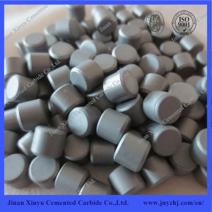Oil Drill Use Tungsten Carbide Flattop Buttons pictures & photos