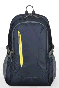 New Arrival Backpack for Laptop (SB2121) pictures & photos