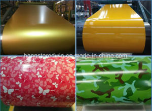 Bur PPGI Supplier in China pictures & photos