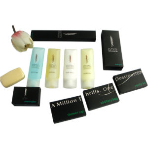 Federal Palace Hotel Guest Room Amenities Set pictures & photos