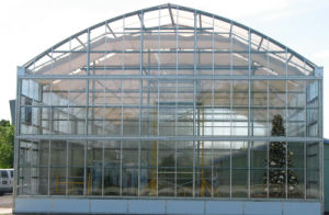Hot Sale Fruit and Vegetable Greenhouse/ Agricultural Greenhouse/ Glass Greenhouse pictures & photos