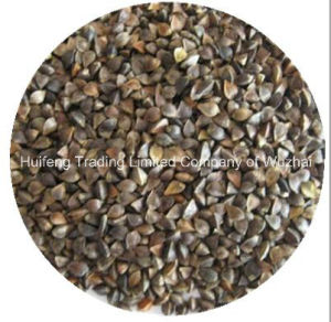 Export Shanxi Origin Buckwheat for Sale