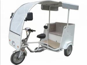 Electric Three Wheels Passengers Car