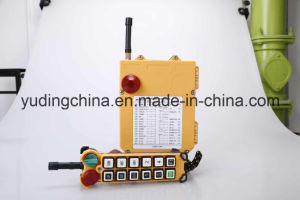 Best Quality Industrial Wireless Radio Remote Control F24-12D pictures & photos