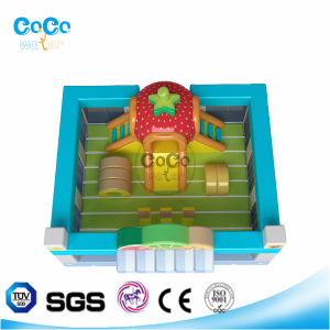 Popular-Style Cocowater inflatable Fruit Station Bouncer/Slide for Kindergarden LG9038 pictures & photos