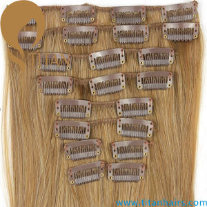 Virgin Human Hair Extensions Clip in Hair Extension