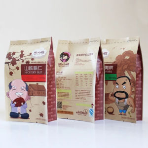 Lanimated Kraft Paper Shopping Gift Bags From Professional Factory (FLP-8965) pictures & photos