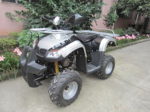 New Body Design 110cc Ce Approved Racing Quad Et-ATV005) pictures & photos